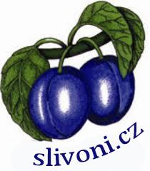 Slivoni.cz