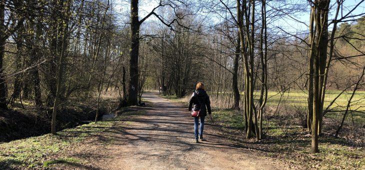 Aprílová procházka s hafanem