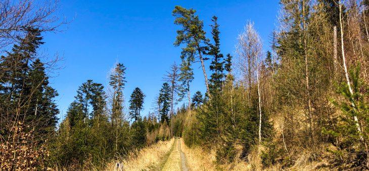 Břidlicové doly Čermná ve Slezsku